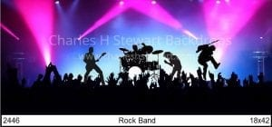 Rock-Band-Backdrop