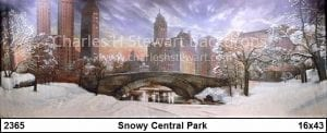 Snowy-Central-Park-Backdrop