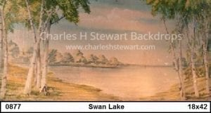 swan-lake-backdrops