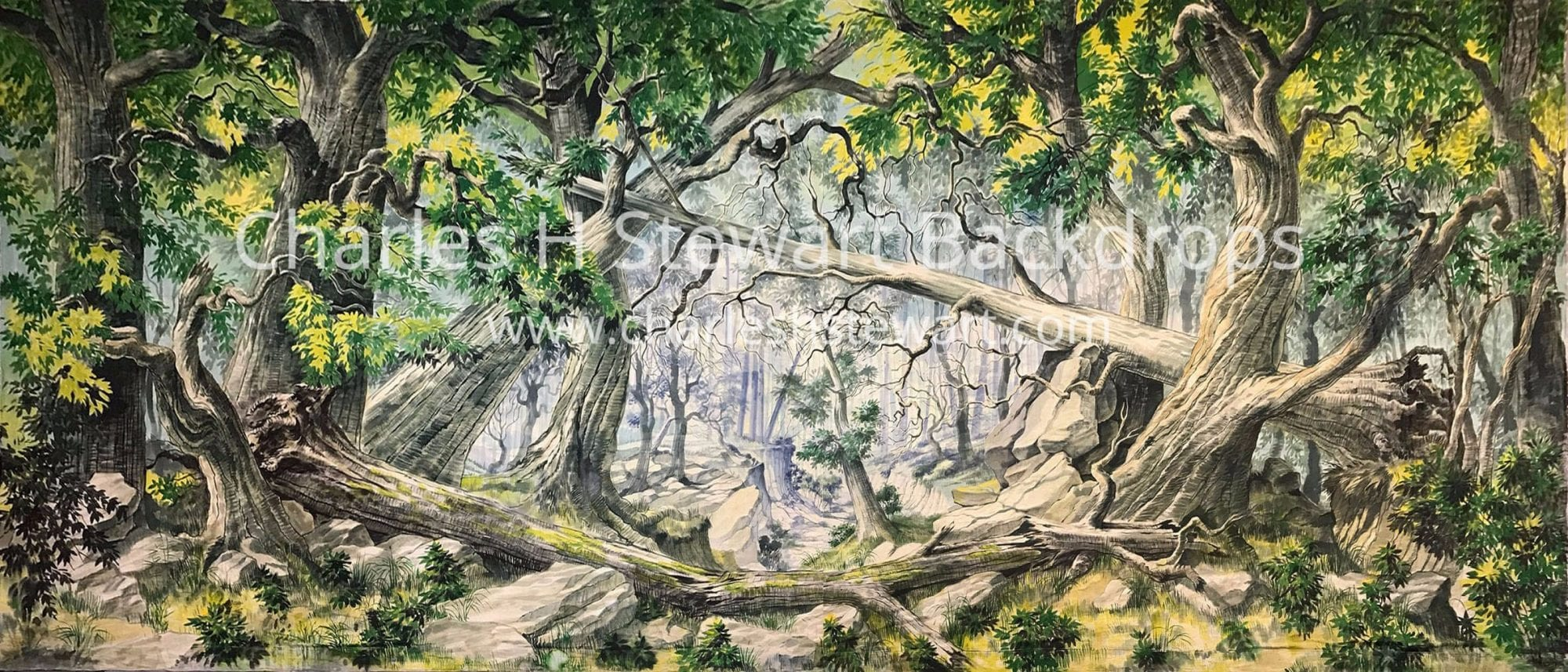 Tangled Forest Backdrop Backdrops By Charles H Stewart