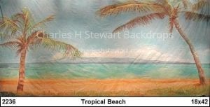 Tropical-Beach-Backdrop