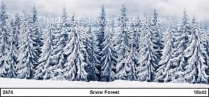 Winter-Forest-Backdrop