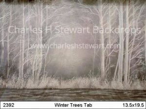 Winter-Forest-Tab-Backdrop