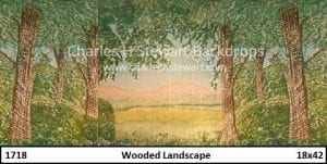 wooded-landscape-backdrop