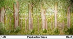 woods-backdrop