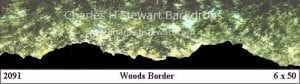 woods-border-backdrop
