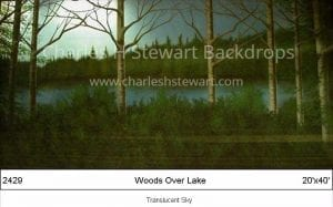 Woods-Over-Lake-Backdrop