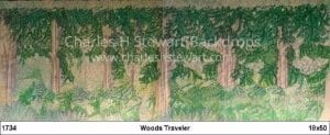 woods-traveler-backdrop