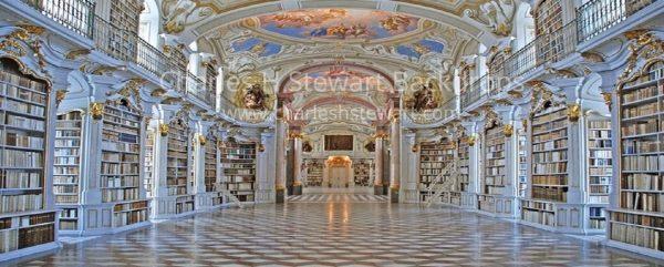 Palace-Library-Backdrop