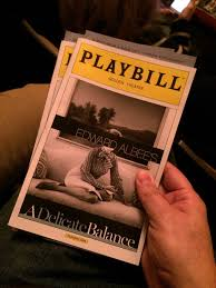 photo of a playbill in hand