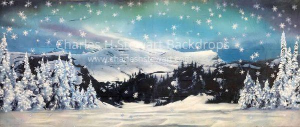 Snow Covered Landscape Backdrop For Rent