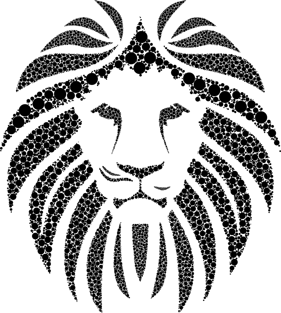 African lion face image